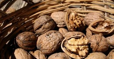 Un nuovo studio canadese mostra le proprietà delle noci per la dieta, utili sia per attenuare gli effetti del diabete di tipo 2 che per dimagrire.