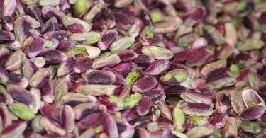 pistacchi bronte