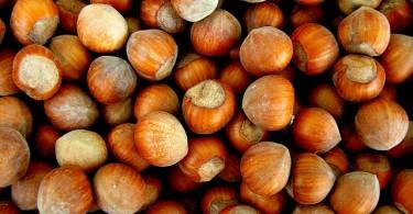 """Le particolarità della frutta secca sono state al centro di un convegno dal titolo: """"Biodiversità dell'Alto Molise. Dal tartufo al nocciolo."""